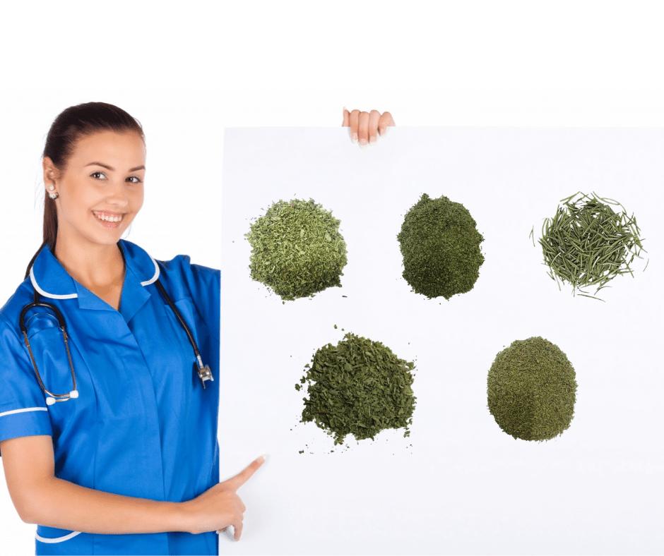 5 erbe aromatiche per la salute