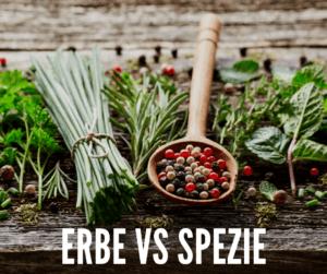 Spezie ed erbe aromatiche: sai quali sono le differenze?