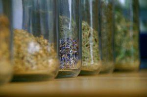 Come conservare a casa le erbe aromatiche.